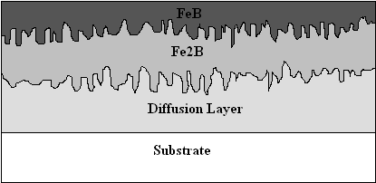 Diffusion and Fe2B and FeB
